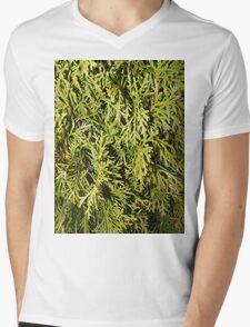 Evergreen Mens V-Neck T-Shirt