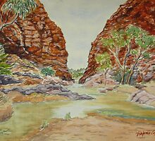 Simpson's Gap, West MacDonnell Ranges, NT by Virginia  Coghill