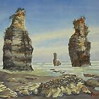 North Taranaki rock stacks NZ by Virginia  Coghill