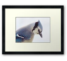 Searching . . .  Framed Print