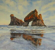 Archway Islands NZ by Virginia  Coghill
