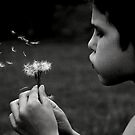 wishes by mrobertson7