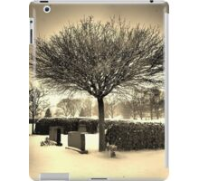 Frozen Memories  iPad Case/Skin