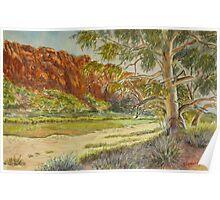 Glen Helen Gorge, Central Australia Poster
