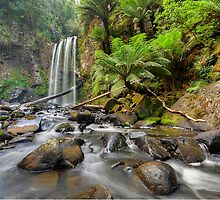 Hopetoun Falls by Warren  Patten