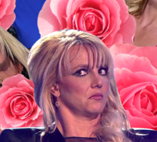 Britney's Fab Sticker