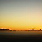 """MORNING HAZE"" by snapitnc"