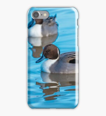 Pintail Duck iPhone Case/Skin