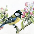 Great Tit and Apple Blossom by Nicole Zeug