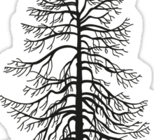 No. 1 The Larch Sticker