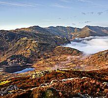 Blea Tarn & Great Langdale by David Lewins