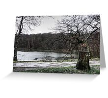 DEAD NATURE Greeting Card