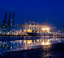 Millbrook Docks 01-2013 by Richard Hepworth