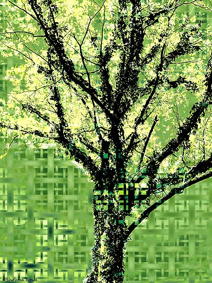 Entwined in Green by SRowe Art
