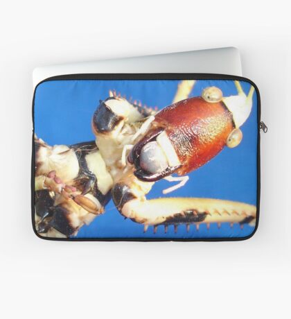 Katydid Bush Cricket Macro Against Blue Sky Laptop Sleeve