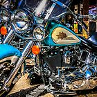 Harley Davidson Motorcycles by Chris L Smith