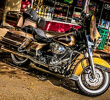 Custom vintage Harley motorcycle  by Chris L Smith