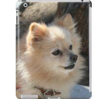 Pomeranian dog iPad Case/Skin
