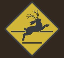 Jackalope Crossing by scoundrel