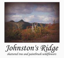 shattered tree & paintbrush wildflowers on Johnston's Ridge One Piece - Short Sleeve