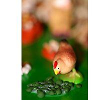 Little Chicken Photographic Print
