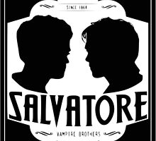 The vampire diaries-Salvatore Brothers by KikkaT