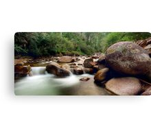 Bogong Dream Canvas Print