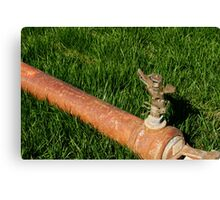 Sprinkler Canvas Print