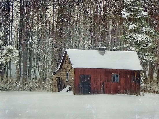 Red shed in the white snow by vigor