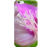 Pink Polygala Myrtifolia in Macro with Green Background  iPhone Case/Skin