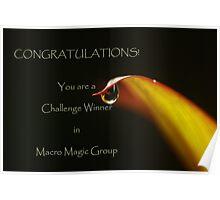 banner for Macro Magic Poster