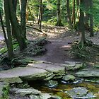 Rustic Stone Bridge On Highland Trail by Gene Walls