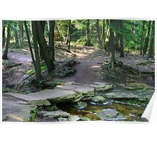 Rustic Stone Bridge On Highland Trail Poster