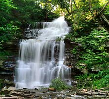 Ganoga Falls In Rickett's Glen by Gene Walls