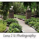 Tamborine Botanical Gardens by Bruce Billing