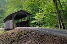 J. Fink Bridge Across Larry's Creek by Gene Walls