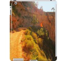 The Trail In iPad Case iPad Case/Skin