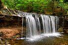 Under The Oneida Falls Ledge by Gene Walls