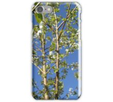 cherry tree and sky iPhone Case/Skin