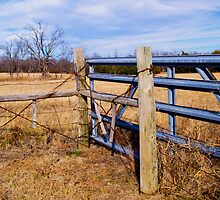 Country gate by NadT