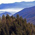 A Smoky Mountain View by Terri~Lynn Bealle