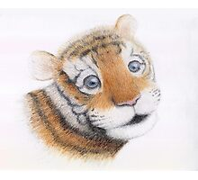 Cute Tiger Cub Portrait Photographic Print
