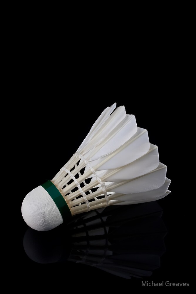 Badminton by Michael Greaves