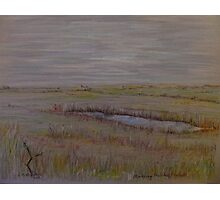 Norfolk Marshes, Blakeney Photographic Print