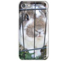 Klotter, the rabbit iPhone Case/Skin