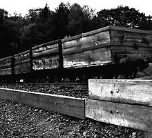 Coal Wagons by Andrew Pounder