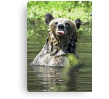 """I Don't Care"" Bear  Card Canvas Print"