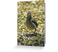 """""""I Don't Care""""  Chick Card Greeting Card"""