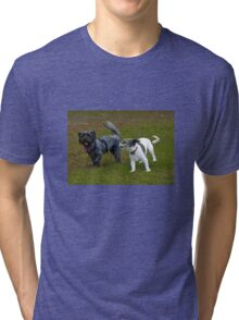 Who Let the Dogs Out? Tri-blend T-Shirt