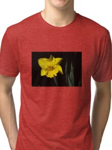 The Daffodil Tri-blend T-Shirt